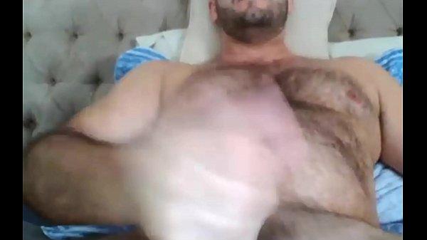 Brazilian bear webcam solo
